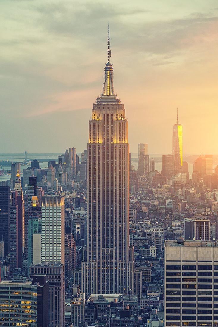 york citys buildings department - 733×1100